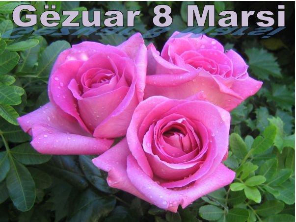 8 Marsi dita i gjithë nënave tona!